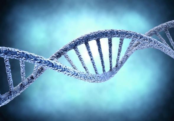 【異動股】轉基因板塊下挫,萬向德農(600371-CN)跌4.03%