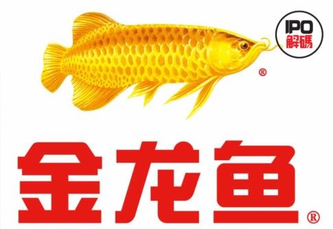 金龍魚要上市,千億掌門人商業版圖大曝光
