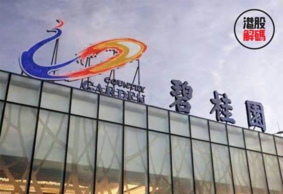 世界500強超級黑馬碧桂園:深藏功與名(積德累功篇)