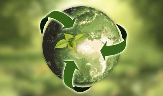 百洋股份:擬2550萬元參設再生資源公司 進一步培育新的增長點