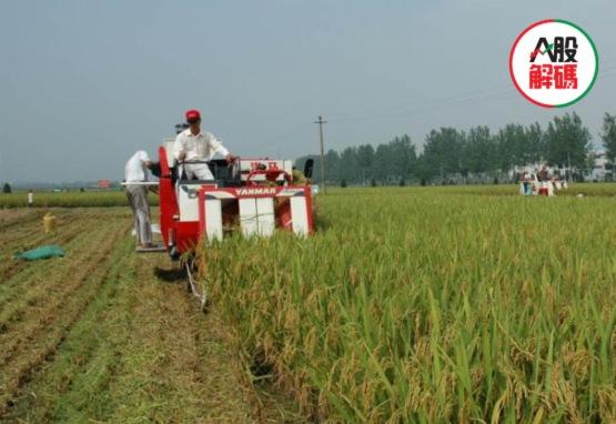 全球恐慌糧食危機多國限出口 兼具防禦屬性的農業股表現亮眼