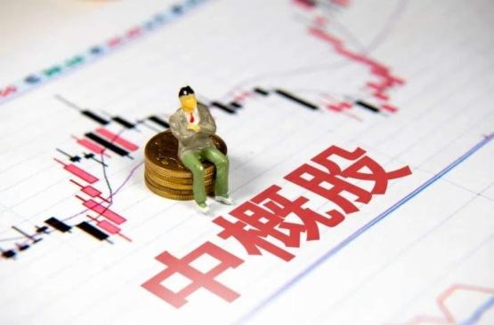 【中概股IPO追蹤】拜騰、賽麟接連「暴雷」 理想汽車奔赴「蔚來」之路