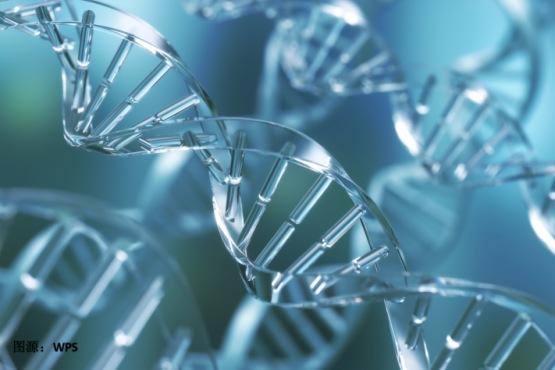 特稿 港股生物科技:2020年「藥明雙雄」挑大梁,2021年生物科技方興未艾