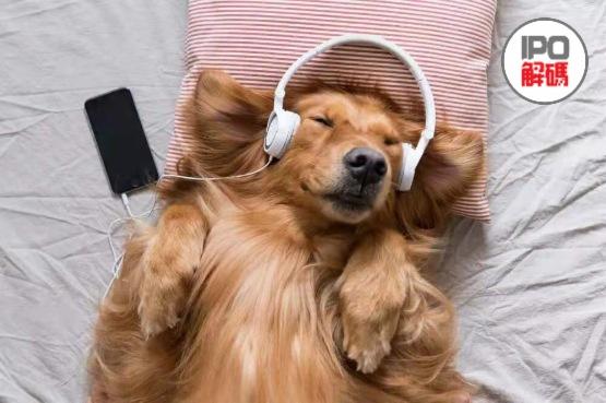 【IPO前哨】瘋狂購買音樂版權,網易雲音樂更像直播平台?